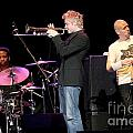 Chris Botti by Concert Photos