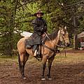 Chris On Horseback by Brenda Jacobs