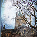 Christ Church Cathedral Dublin by Alex Art and Photo