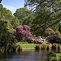 Christchurch Botanic Gardens New Zealand by Peter Lloyd