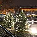 Christmas At The Ellipse - Washington Dc - 01131 by DC Photographer