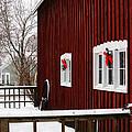 Christmas Barnyard by Linda Shafer