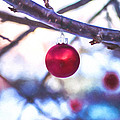 Christmas Bauble by Chris Bordeleau