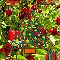 Christmas Berries by Patrick J Murphy