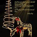 Christmas Card 2014 by Judy  Johnson