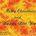 Christmas Cards And Artwork Christmas Wishes 37 by Gert J Rheeders
