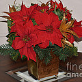Christmas Centerpiece by Ruth  Housley