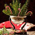 Christmas Decoration by Amanda Elwell