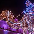 Christmas Decorations by Jess Kraft