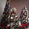 Christmas Display - Mt Vernon - 01131 by DC Photographer