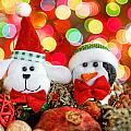Christmas Dog And Penguin by Peter Lakomy