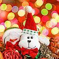 Christmas Dog by Peter Lakomy