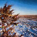 Christmas Eve On The Prairie by HW Kateley