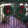 Christmas Gate by Diana Powell