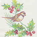 Christmas Holly Bird by Dale Jackson