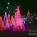 Christmas Hues by Marian Bell