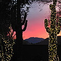 Christmas In Arizona by Marilyn Smith