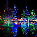 Christmas Lights by Rob Mclean