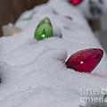 Christmas Lights1 by Michael Mooney