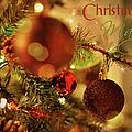 Christmas Magic by Paulette B Wright