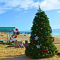 Christmas Om The Beach by Richard Jenkins