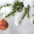 Christmas Ornament in the Snow by Diane Diederich