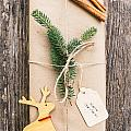 Christmas Present by Viktor Pravdica