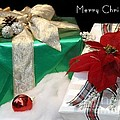 Christmas Presents by Living Color Photography Lorraine Lynch