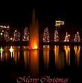 Christmas Reflection - Christmas Card by Chris Flees