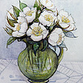 Christmas Roses by Gillian Lawson