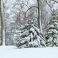Christmas Snow by Deb Buchanan