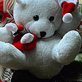 Christmas Teddy Bear by Kathleen Struckle