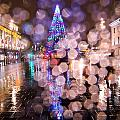 Christmas Tree by Alex Art and Photo