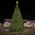 Christmas Tree Hampton City Center  by Greg Hager