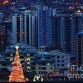Christmas Tree In La Paz by James Brunker