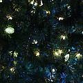 Christmas Tree Lights by Crystal Harman