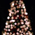 Christmas Tree Out Of Focus by Alex Grichenko