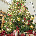Christmas Tree  With Presents Tall Perspective by Jit Lim