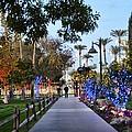 Christmas Walk by Richard Jenkins