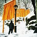 Christo - The Gates - Project For Central Park In Snow by Nishanth Gopinathan