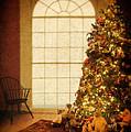Chritsmas Tree by Jill Battaglia