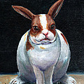 Chubby Bunnie by Linda L Martin