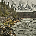 Chugach Range by Erika Fawcett