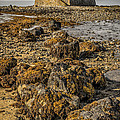 Church By The Rocks by Adrian Evans
