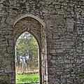 Church Doorway by Steev Stamford