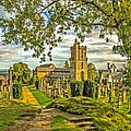Church Of The Holy Rude Cemetery Stirling by Tylie Duff