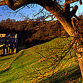 Church On A Landscape, Rievaulx Abbey by Panoramic Images
