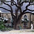 Church On Rosedale With A Dusting Of Snow by Amy Hosp