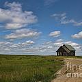 Church On The Plains by David Arment