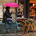 Ciclista - Milano by Carlos Alkmin